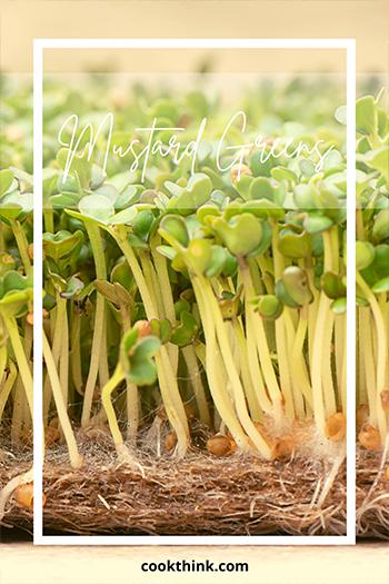Mustard Greens_1