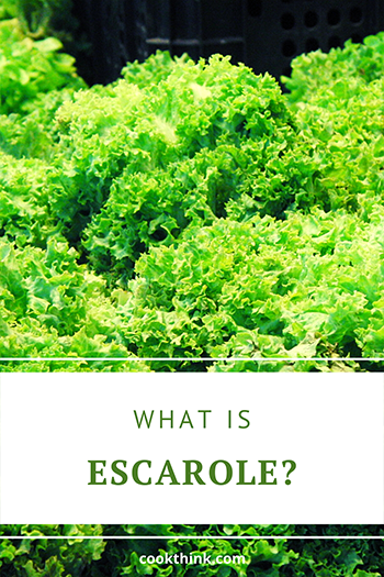 What Is Escarole?_2