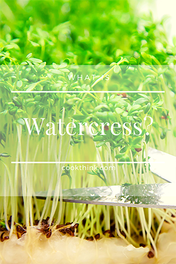 What Is Watercress?_4