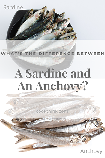 What's The Difference Between A Sardine and An Anchovy?_1