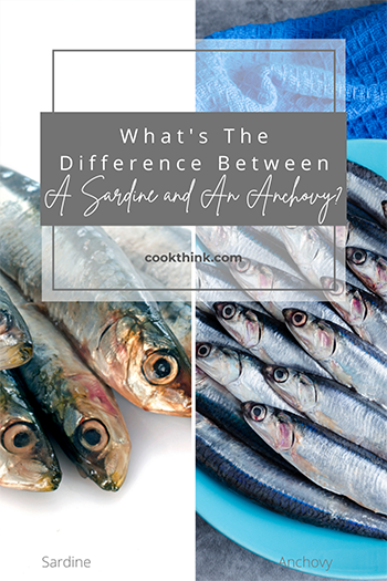What's The Difference Between A Sardine and An Anchovy?_2