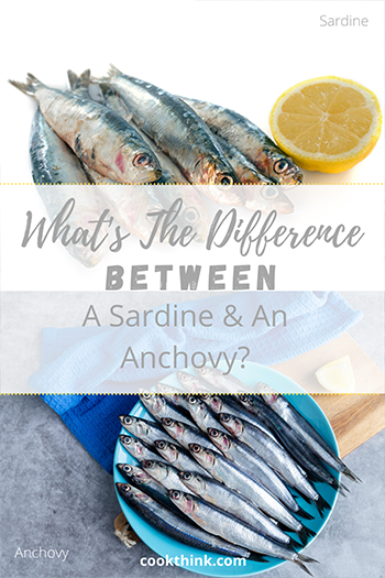 What's The Difference Between A Sardine and An Anchovy?_3