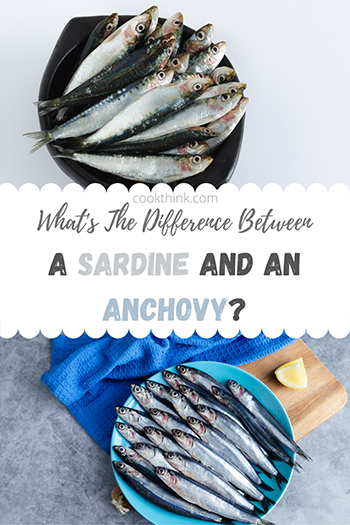 What's The Difference Between A Sardine and An Anchovy?_7