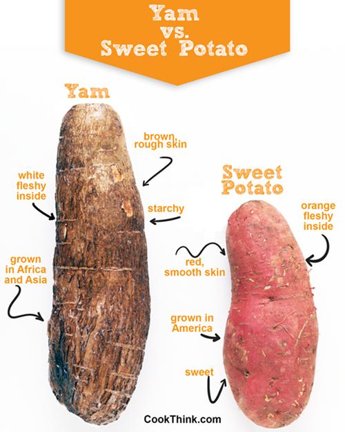 Sweet Potato Vs. Yam
