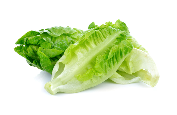 How to Cut a Head of Lettuce for Salad. Fresh Lettuce.