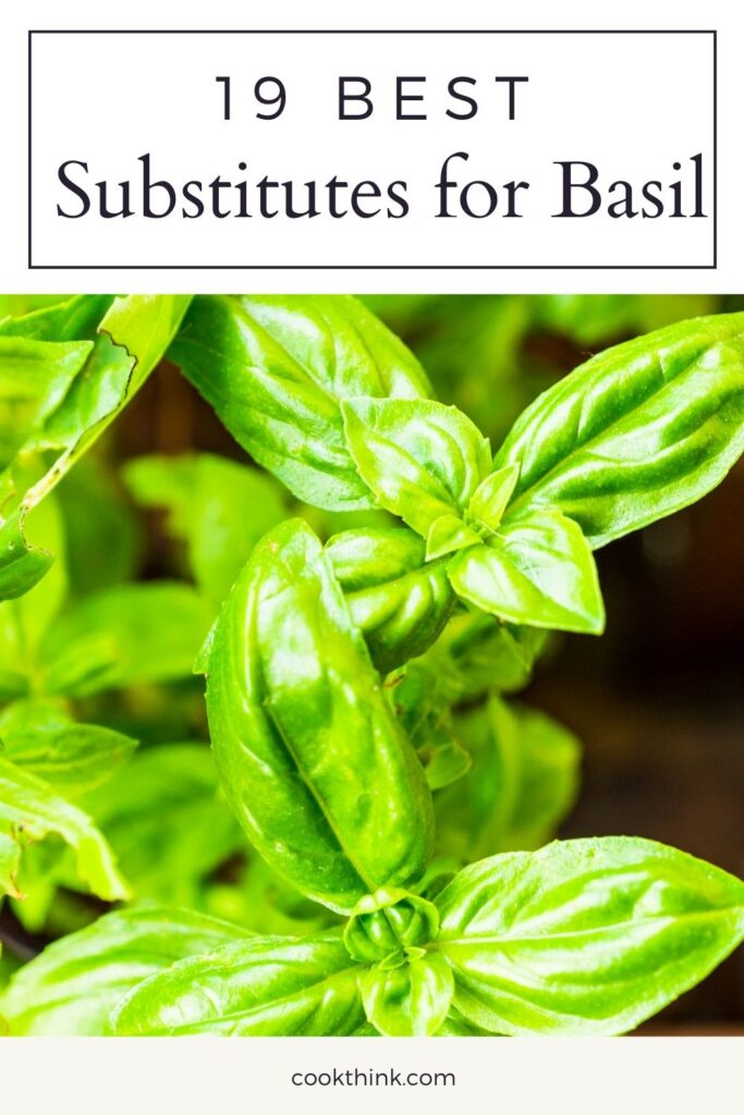 best substitutes for basil pinterest pin