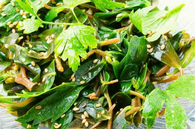 purslane salad2